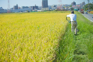 農業用水路工事